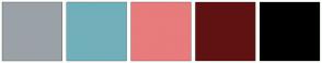 Color Scheme with #9BA2A7 #71B0BA #E87B7B #601212 #000000