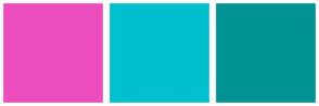 Color Scheme with #ED4DBD #00C0CF #009394