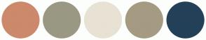 Color Scheme with #CC896C #9A9883 #E8E2D4 #A49B82 #234058