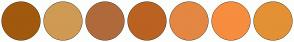 Color Scheme with #A1590D #CF9A54 #B06A3B #BA6222 #E48743 #F78D3F #E49135