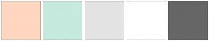 Color Scheme with #FFD6BF #C6EADD #E3E3E3 #FFFFFF #666666