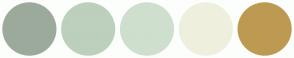 Color Scheme with #9CAA9C #BDCFBD #CEDFCE #EFEFDE #BD9A52
