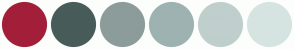 Color Scheme with #A31E39 #485C5A #8C9C9A #9DB2B1 #BFCFCC #D6E4E1