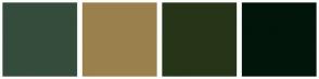 Color Scheme with #354C3C #9A804D #263517 #02150A