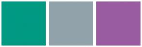 Color Scheme with #009982 #91A2AB #9A5CA1