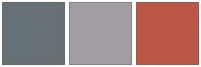 Color Scheme with #677175 #A29DA3 #BA5847
