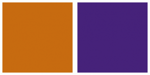 Color Scheme with #C76B10 #46227A