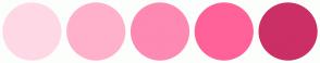 Color Scheme with #FFD8E6 #FFB1CC #FE89B3 #FE6299 #CB2F66