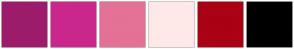 Color Scheme with #9C1C6B #CA278C #E47297 #FFE9E8 #AA0114 #000000