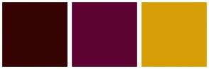 Color Scheme with #360303 #5E0231 #D79E06