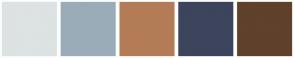 Color Scheme with #DDE2E3 #9AACB8 #B37C57 #3C455C #60412B