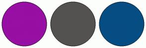 Color Scheme with #970FA3 #535250 #064D83
