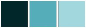 Color Scheme with #02272B #56ADBA #A2D7DE