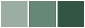 Color Scheme with #9CADA4 #668877 #335544