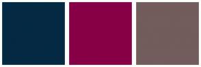Color Scheme with #042942 #870047 #725C5C