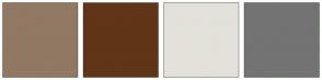 Color Scheme with #917964 #613518 #E3E1DA #737373