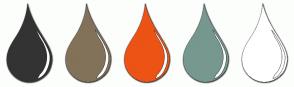 Color Scheme with #333333 #827259 #ED5314 #76988F #FFFFFF