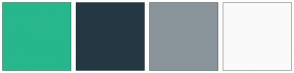 Color Scheme with #28B78D #243743 #8A949B #FAFAFA