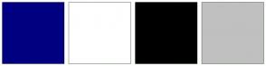 Color Scheme with #000080 #FFFFFF #000000 #C0C0C0