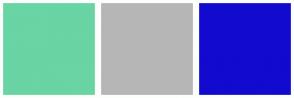 Color Scheme with #69D4A4 #B6B6B6 #120ACF