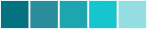 Color Scheme with #027381 #298D9C #1EA6B0 #17C5CC #94DEE2