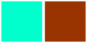 Color Scheme with #00FFCC #993300