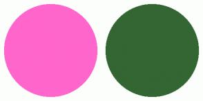 Color Scheme with #FF66CC #336633