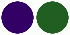 Color Scheme with #330066 #215E21
