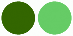 Color Scheme with #336600 #66CC66