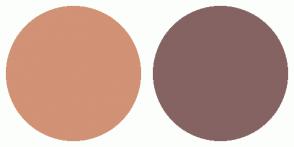 Color Scheme with #D19275 #856363
