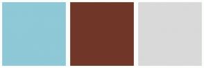 Color Scheme with #8FC8D6 #703729 #D9D9D9