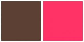 Color Scheme with #5C4033 #FF3366