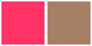 Color Scheme with #FF3366 #A68064