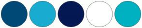 Color Scheme with #004976 #19ACD1 #041854 #FFFFFF #00B1C2