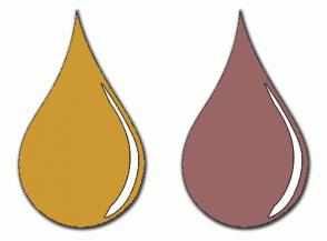 Color Scheme with #CC9933 #996666