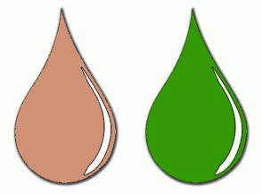 Color Scheme with #D19275 #339900