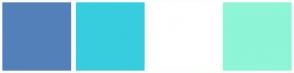Color Scheme with #5380B8 #37CDDE #FFFFFF #8EF5D6