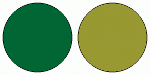 Color Scheme with #006633 #999933