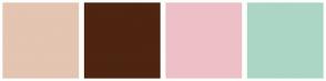 Color Scheme with #E3C5B1 #4D2510 #EDC0C7 #ABD6C5