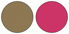 Color Scheme with #8C7853 #CC3366