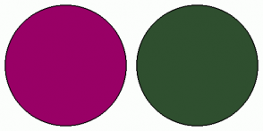 Color Scheme with #990066 #2F4F2F