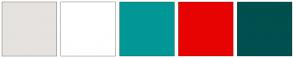 Color Scheme with #E6E2DF #FFFFFF #029797 #E80303 #00504F