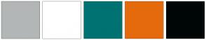 Color Scheme with #B3B6B6 #FFFFFF #007272 #E56A0C #000606