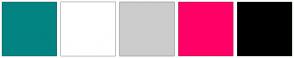 Color Scheme with #028482 #FFFFFF #CCCCCC #FF0066 #000000