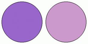 Color Scheme with #9966CC #CC99CC