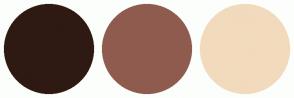 Color Scheme with #2E1A12 #8F5B4F #F2DABD