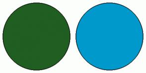 Color Scheme with #215E21 #0099CC