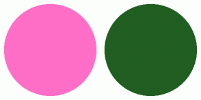 Color Scheme with #FF6EC7 #215E21