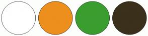 Color Scheme with #FFFFFF #ED8F1C #3A9E2F #3B301B