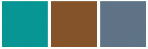 Color Scheme with #079694 #85532A #607487